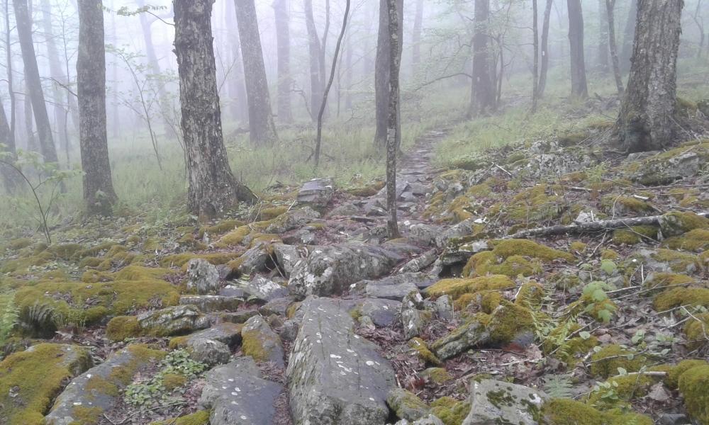 may 13 rocks